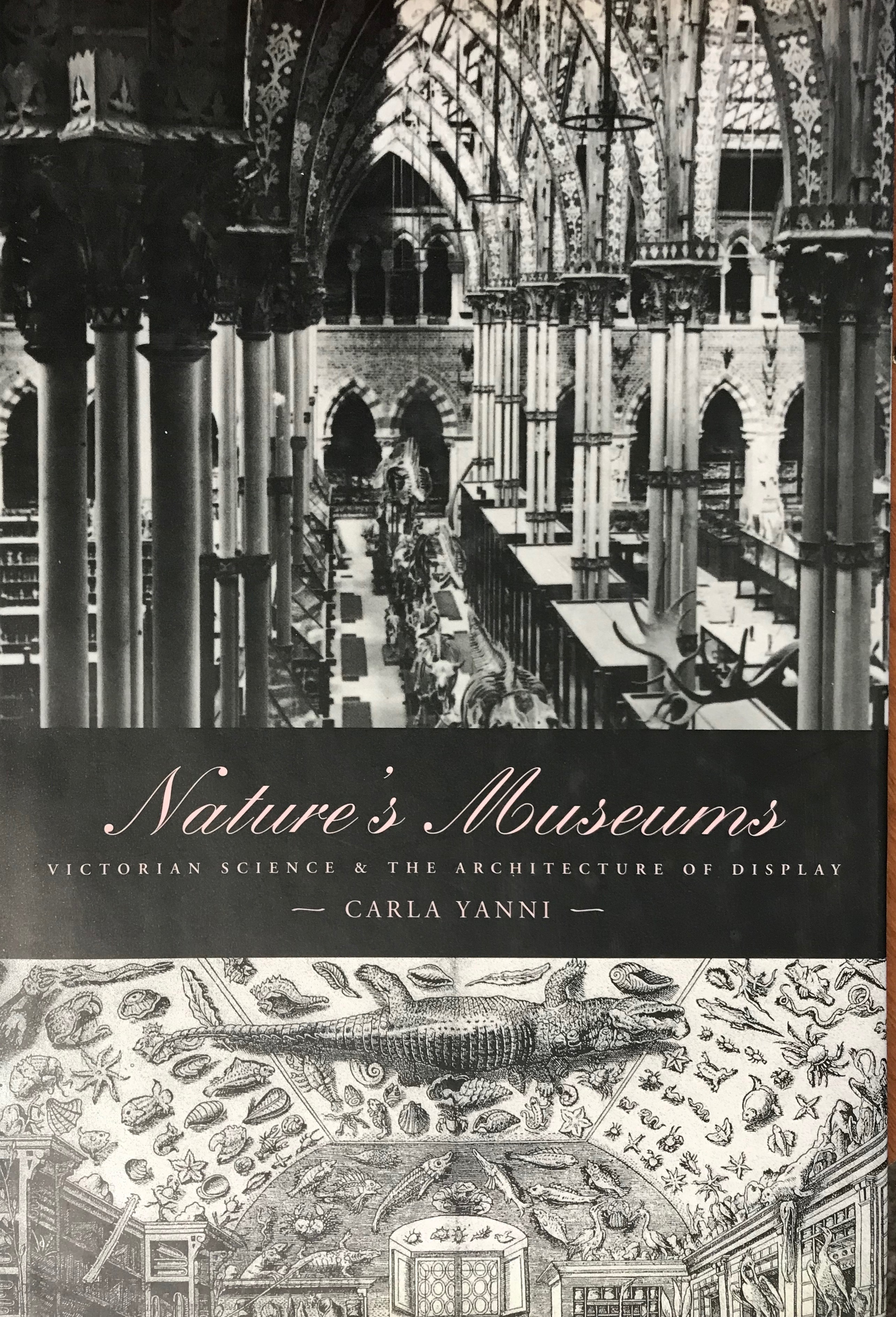 Cover Yanni Natures museums